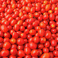 Pile Of Small Tomatos For Sale In Market by PorqueNo Studios