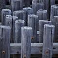 Piles by David Halperin