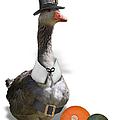 Pilgrim Goose by Gravityx9 Designs