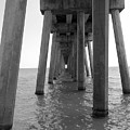 Black And White Pier by Shannon Turek