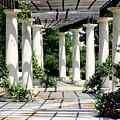 Pillars by Greg Sharpe