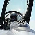 Pilot by Bert Mailer