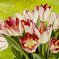 Pink Tulips by Dawn Aumann