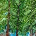 Pine Haven by Lori Radecki