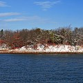 Pine Island In The Snow by Bill Driscoll