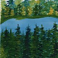 Pine Lake by David Bartsch