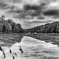 Pine Lake In Black And White by William Norton