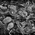 Pine Stump by Bethany Dhunjisha