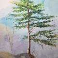 Pine Tree by Yohana Knobloch