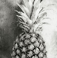 Pineapple Black And White by Andrea Anderegg