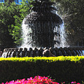Pineapple Fountain Charleston Sc by Susanne Van Hulst