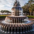 Pineapple Fountain Charleston Sunrise by John McGraw