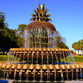 Pineapple Fountain Charleston Sc by Lisa Wooten