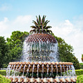 Pineapple Fountain In Charleston South Carolina by Leslie Banks