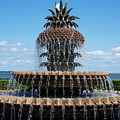 Pineapple Fountain by Melanie Snipes