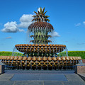Pineapple Fountain by TJ Baccari