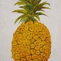 Pineapple Princess by Patti Bean