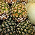 Pineapples And Melons by Michiale Schneider