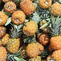 Pineapples by Robert Hamm