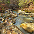 Piney Creek Ravine Revisited 1 by Greg Matchick