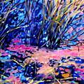 Pink Algae by Brian Simons