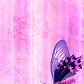 Pink And Purple Butterfly Companions 2 by JQ Licensing