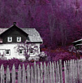 Pink And Purple Enchanted Cottage by Brooke T Ryan