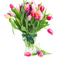 Pink And Violet Tulips Bouquet  by Anastasy Yarmolovich