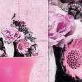 Pink by Angela Doelling AD DESIGN Photo and PhotoArt