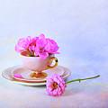 Pink Attitude by Randi Grace Nilsberg