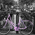 Pink Bicycle By The Canal by Aidan Moran