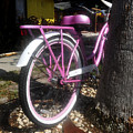 Pink Bicycle by David Lee Thompson