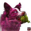 Pink Border Collie - Elska -  9847 - Wb by James Ahn