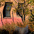 Pink Brick House by Lenore Senior