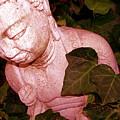 Pink Buddha Love by Chuck Taylor