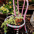 Pink Chair Planter by Allen Nice-Webb
