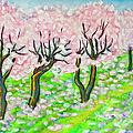 Pink Cherry Garden In Blossom by Irina Afonskaya