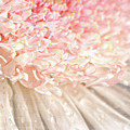 Pink Chrysanthemum With Antique Distress by Sandra Cunningham
