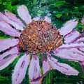 Pink Daisy by Diane Elgin