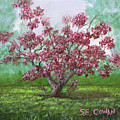Pink Dogwood by SueEllen Cowan