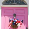 Pink Door by Susan  Lipschutz