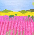 Pink Field by Irina Afonskaya