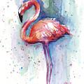 Pink Flamingo Watercolor by Olga Shvartsur