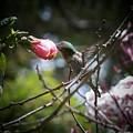 Pink Flower Hummie by Jerilyn Ezinga