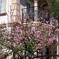 Pink Flower Tree. Elegant by Sofia Metal Queen