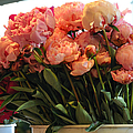 Pink Flowers At The Market by Caroline Reyes-Loughrey