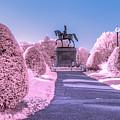 Pink Garden by Bryan Xavier