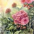 Pink Geranium's  by Barbie Carter