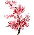 Cherry Blossom, Pink Gifts For Her, Sakura Giclee Fine Art Print, Flower Watercolor Painting by Joanna Szmerdt