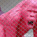 Pink Gorilla by August Timmermans